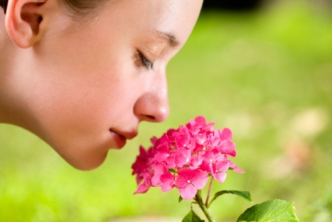 Human nose can detect 1 trillion odours